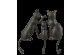 Pakaba Katės