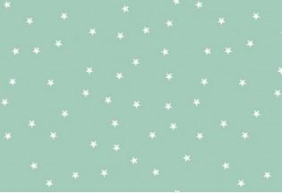 Kiliminė danga Stars-222 pw 4m mėtine