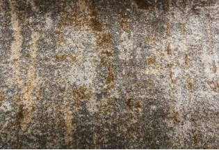 Kiliminė danga GoldenGate-GG002-27152 4m