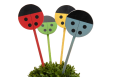 Dekoracija augalams žymėti