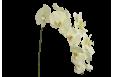 Dirbtinė orchidėja