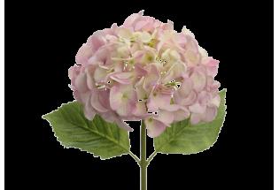 Dirbtinė hortenzija