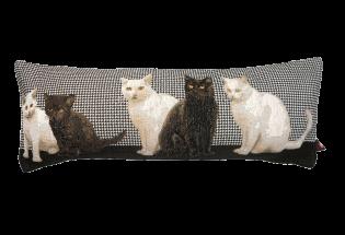 Pagalvėlė Black White Cats black25*90