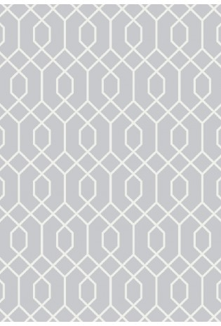 Kilimas Ambiance 1.20*1.70 silver/white