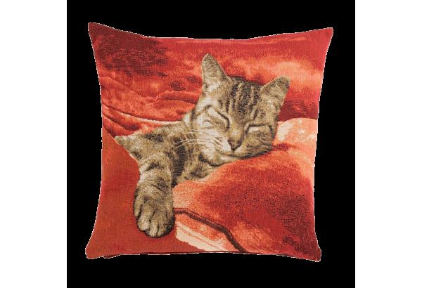 Chat endormi fd rouge 50*50