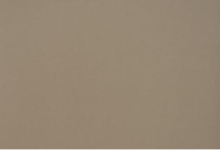 PVC danga Exclusive-200 Fabric fawn 3m