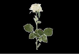 Dirbtinė gėlė rožė white