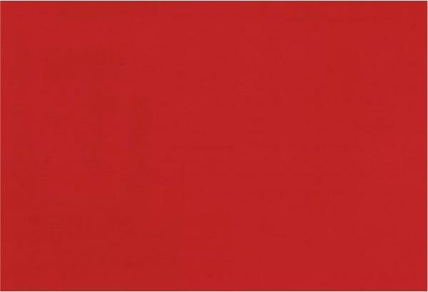 Raudonas kilimas Exporips-0700 foam 2m raud.
