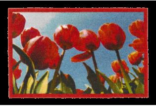 Kilimėlis Inspiration Tulips 0.50*0.75