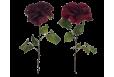 Dirbtinė Rožė