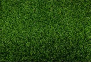 Kiliminė danga Terraza 18mm 4m žolė